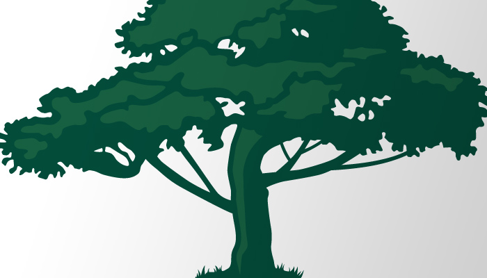 National Woodlands tree symbol